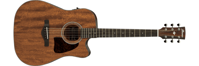 Ibanez AW54CE
