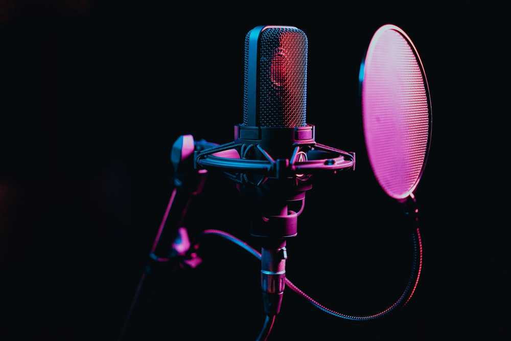 mic with pop filter